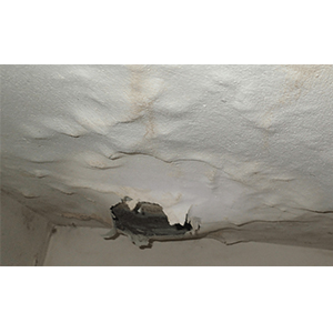 Leaks in Roof Cause Mold