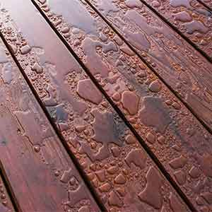 Water Based or Oil Based Deck Paint